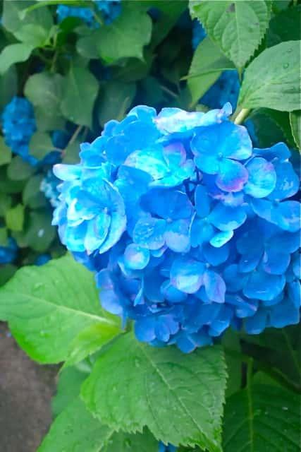 岡山 心療内科 ブログ うつ病 カウンセリング アイソレーションタンク 精神科