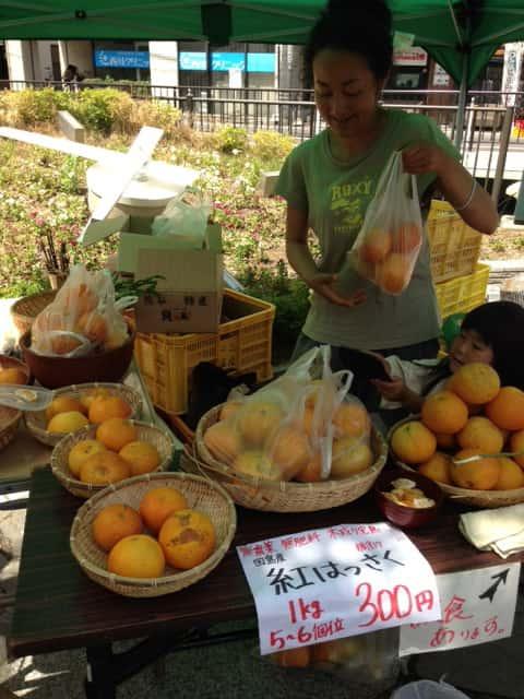 岡山 心療内科 HIKARI CLINIC 有機生活マーケット いち 有機 無農薬野菜 オーガニック